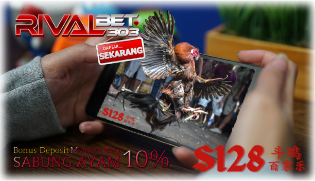 Tips Bermain Game Sabung Ayam S1288 Online